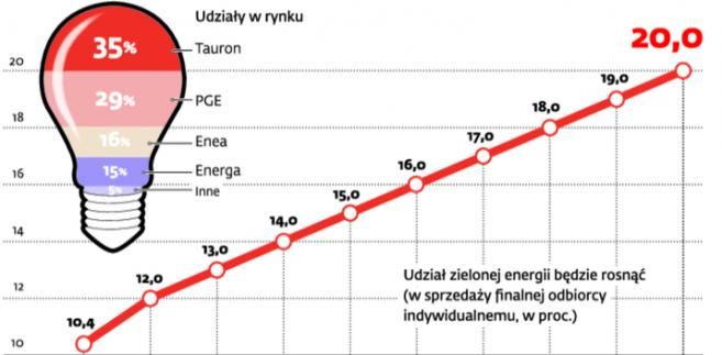 Polski rynek energii