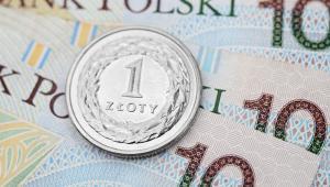 Sprawa dotyczyła raptem 231 zł, ale spór z fiskusem trwał pięć lat i skończył się aż przed sądem kasacyjnym.