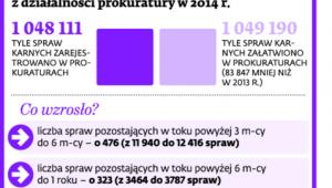 Ze sprawozdania Andrzeja Seremeta z działalności prokuratury w 2014 r.