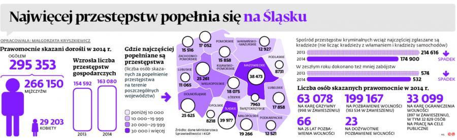 Najwięcej przestępstw popełnia się na Śląsku
