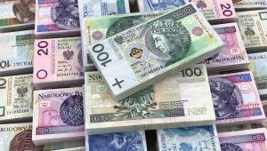 Zadłużenie w jednostkach samorządu terytorialnego wyniosło 66 147 mln zł i stanowiło 28,5% planowanych dochodów ogółem i było o 2,8% niższe od zadłużenia w analogicznym okresie roku ubiegłego. Natomiast w stosunku do 2016 r. zadłużenie po III kwartale 2017 r. było niższe o 4,2%.