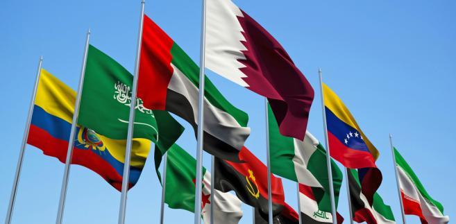 Z ocen analityków wynika, że OPEC i inni poważni dostawcy ropy na świecie przedłużą obowiązywanie porozumienia o mniejszych dostawach ropy o co najmniej 6 miesięcy.