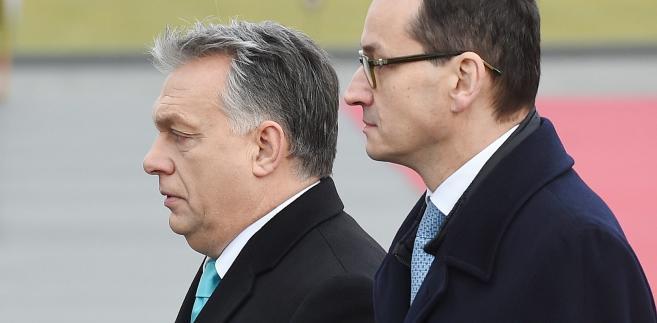 Mateusz Morawiecki, Victor Orban