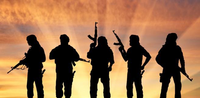 Najwięcej VAT trafia do terrorystów działających w krajach zachodnich