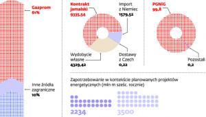 Polski rynek gazu