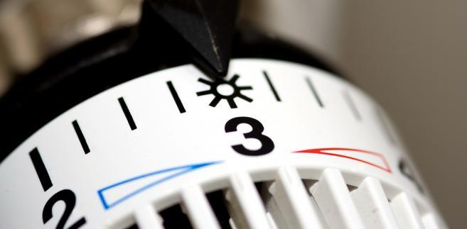 Przeciętne gospodarstwo domowe wydaje co miesiąc na użytkowanie mieszkania i energię 21 proc. dochodów.