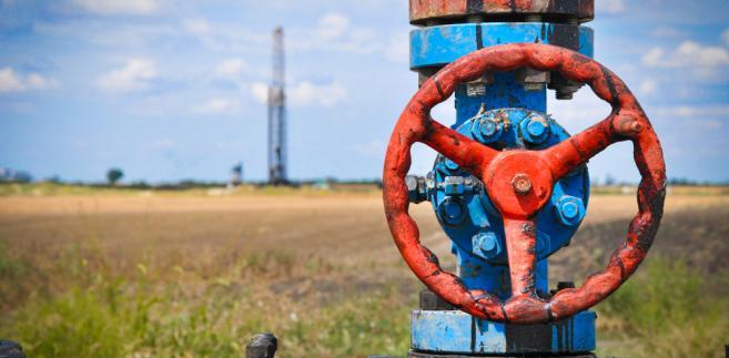 Celem jest dywersyfikacja źródeł, z których pochodzi gaz i jak największe uniezależnienie się od dostaw ze Wschodu.