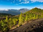 8. miejsce: La Palma - jedna z siedmiu dużych Wysp Kanaryjskich. Oferta noclegowa La Palmy jest dość skromna (w porównaniu do innych Wysp Kanaryjskich) i ogranicza się do 7500 łóżek. Zjawisko turystyki masowej na wyspie jeszcze nie zaistniało (liczba dużych hoteli jest ograniczona). Na wyspie rozwija się przede wszystkim turystyka alternatywna i niezorganizowana w sposób masowy.