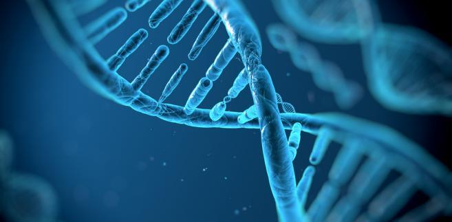 gen, genetyka