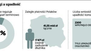 Polskie długi a upadłość