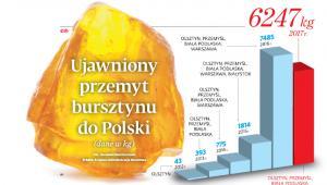 Ujawniony przemyt bursztynu do Polski