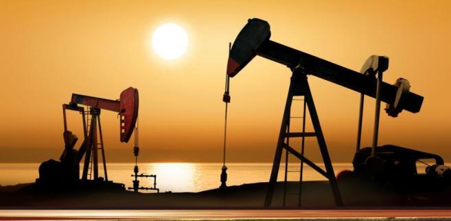 Kraje zrzeszone w kartelu OPEC wydobywają jedną trzecią światowej ropy.