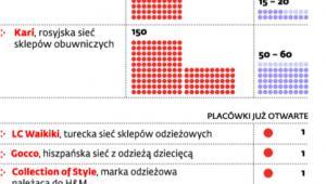 Sieci wchodzą do Polski