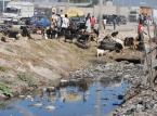 Haiti: Co najmniej 11 osób zginęło w trzęsieniu ziemi