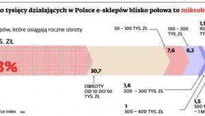 Na około 20 tysięcy działających w Polsce e-sklepów blisko połowa to mikrobiznesy